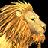 Swift Golden Lion