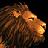 Turmish Lion