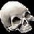 Laughing Skull(Epic)