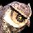 White Owlbear